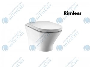 Чаша подвесного унитаза ROCA Nexo Rimless с сиденьем soft-close (A34H64L000)