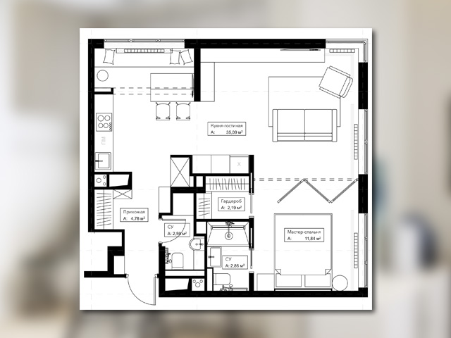 планировка квартиры студии для девушки с котом